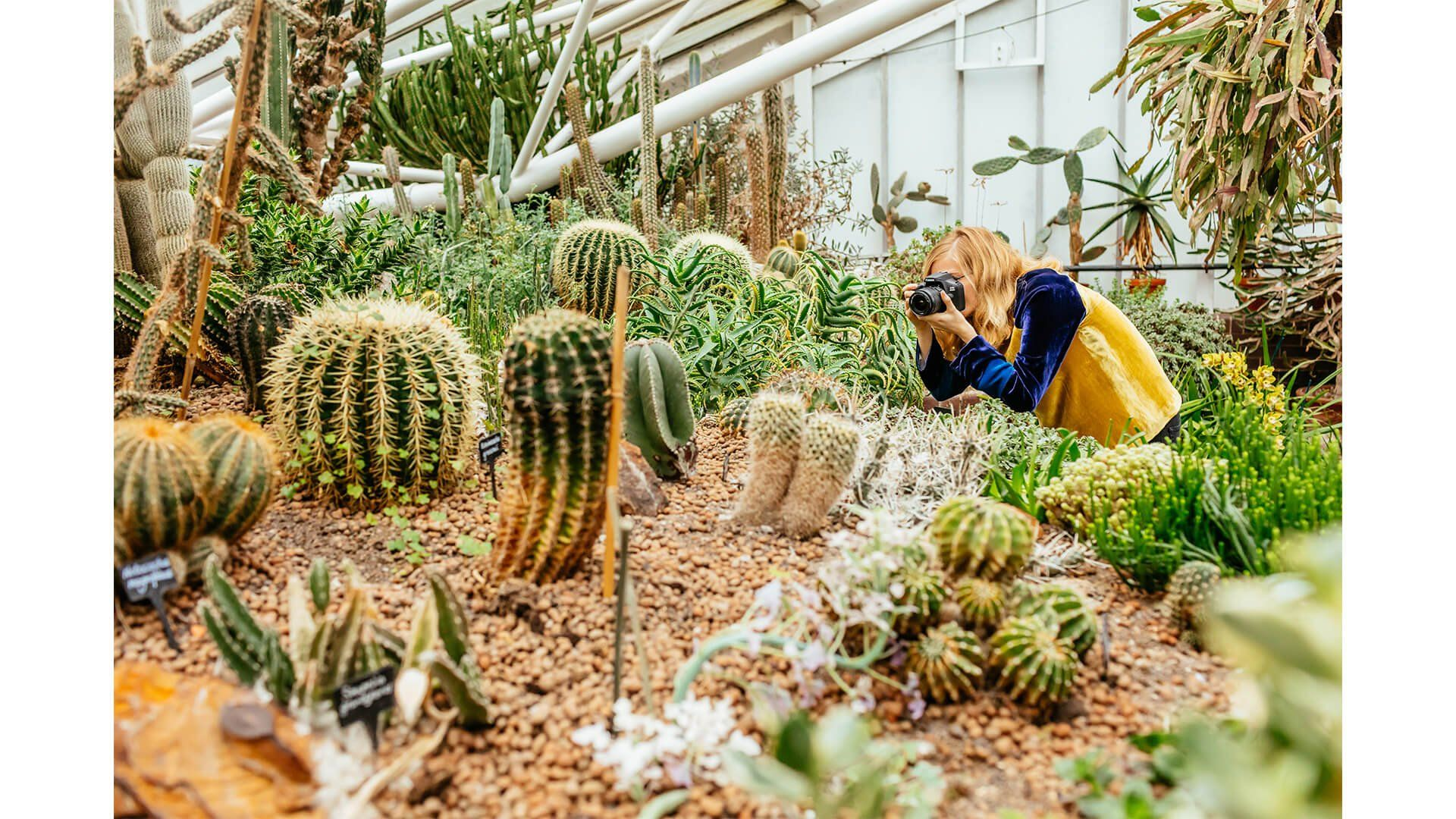 Artist Hattie Newman photographing botanics as inspiration for her work